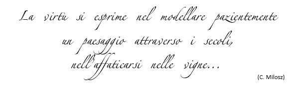 frase-storia